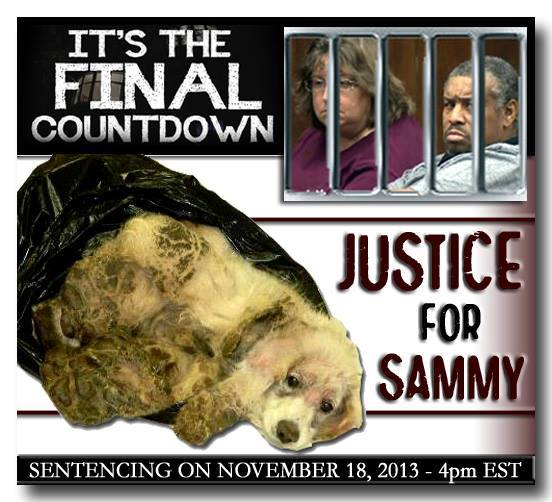 nov 18 sammy