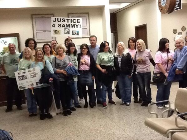 Just some of Sammy's Army at the court house on Monday's sentencing of Keith and Shauna Morgan. Photo: D. De Santis